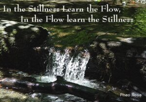 In the Stillness, Learn the Flow. In the Flow, Learn the Stillness.