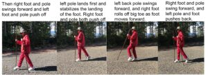 photo showing what same leg arm use with walking staffs